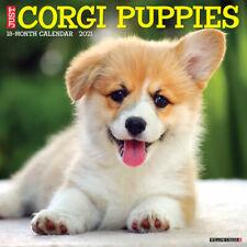 Just Corgi Puppies (dog breed calendar) 2021 Wall Calendar (Free Shipping)