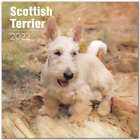 Scottish Terrier Premium Wall Calendar 2022 - Made in the USA