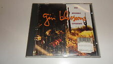 CD  New Miserable Experience von Gin Blossoms