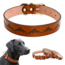 Leather Dog Collar for Medium Large Dogs Heavy Duty Brown Big Dog Collar Bulldog