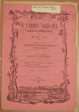 L'UMBRIA AGRICOLA 15 30 SETTEMBRE 1886 VINO SVIZZERA CITTA DI CASTELLO BOLZANO