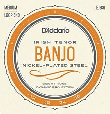 D'Addario EJ63i Irish Tenor Banjo Strings, Nickel, 12 - 36