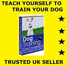 (D008) TEACH YOURSELF DOG TRAINING, SELF HELP AUDIOBOOK, MP3 INSTRUCTIONAL CD