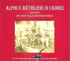 ALPINI E ARTIGLIERI IN CADORE (1848-1915)  DA CALVI ALLA GRANDE GUERRA