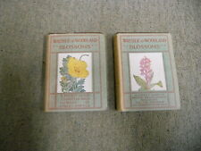 Wayside and Woodland Blossoms, Third Series and First Series. by Step, Edward