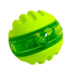 Hyper Pet Dura-Squeaks Floating Bouncing Sphere Dog Toy.