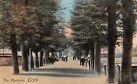 Vintage Ireland Irish Postcard, The Mardyke, Cork by Philco Series DC6
