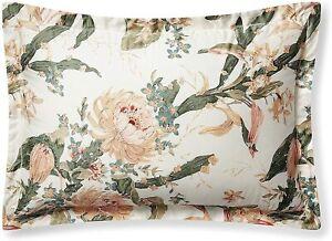 Ralph Lauren King Botanical Floral Sham Josefina Cotton Cream 20 x 36 Inches