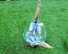 Wurzelholz Glas Vase L, Deko Glas L, Einzigartige Gamal L, Wurzel Holz Liqva L