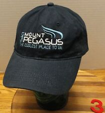 """""""SKI MOUNT PEGASUS THE COOL PLACE TO BE"""" HAT ADJUSTABLE VERY GOOD CONDITION 3"""