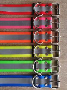 Dog Yard Collar 50mm Reflective , Pig, Fox, Pet, Greyhound, Sambar Hound Deer