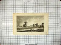 Old Antique Print Engraving View Corsham House Horses River Church Trees 18th