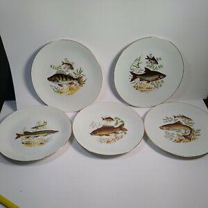 Bareuther Waldsassen Fish Plate Bavaria Germany Plates vintage set of 5