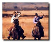 Western Rodeo Cowboy Roundup Horse Wall Decor Art Print Poster (16x20)