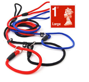 Nylon Dog Lead- Slip on Rope (Choice of 3 colours) *Strong*   *No Collar Needed*