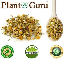 Chamomile Flowers Whole Organic Matricaria Chamomilla Tea Loose Bulk Dried Herb