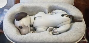 Very Rare Sony AIBO ERS-1000 JAPAN New