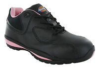 Dickies Ohio Safety Lightweight Womens Steel Toe Cap Industrial Trainers Shoes