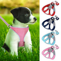 Reflective Dog Harness with Leash Padded Step in Puppy Comfortable Walking Vest