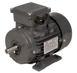 TEC 3 Phase TEFC IE2 Motor 230/400V 50HZ Foot Flange or Face Mount 0.37kw to 3kw