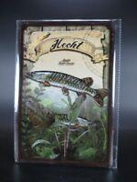 Blechschild Hecht Raubfisch Fisch Angeln Angler Fischer Metall 30cm,Metal Shield