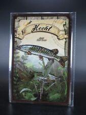 Friedfische+Raubfische im Set 2 Blechschilder 20x30 cm Übersicht Angeln