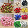 40pcs Mini Christmas Artificial Foam Frosted Fruit Holly Berry Flower Home Decor