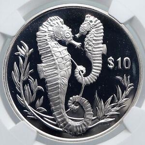 2017 British Virgin Islands UK QUEEN - SEAHORSE Proof Silver $10 Coin NGC i89219