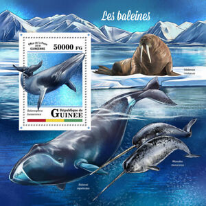 Guinea 2018 MNH Whales Whale 1v S/S Marine Mammals Animals Stamps