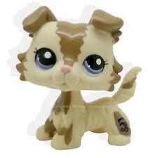 Littlest Pet Shop Brown Choco Cream Collie Dog Puppy Blue Eyes Loose LPS #2210