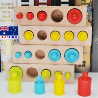 Montessori Colorful Socket Cylinder Blocks Wooden Kids Educational Edu Toys Set!