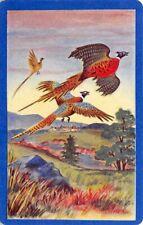 Pheasants Birds Single Swap Playing Card Vintage Blank Back