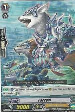 CARDFIGHT VANGUARD CARD: PACCGAL - G-CMB01/031EN C