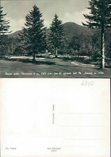 PRATO DELLE MACINAIE m.1300  CON LO SFONDO DEL M. AMIATA m.1734    (rif.fg.6710)