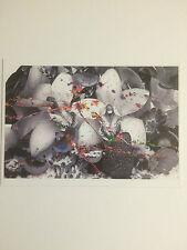 Marc QUINN, Kate Moss, ARTIST'S PROMOTIONNEL Carte, 2011