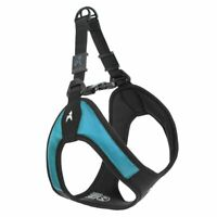 Gooby - Escape Free Easy Fit Harness, Small Dog Step-In Harness for Dogs that Li