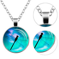 Pretty Dragonfly Cabochon Glass Tibet Silver Chain Pendant Necklace