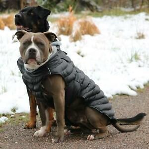 Alpine Extreme Weather Puffer Dog Coat - Black  XS-5XL