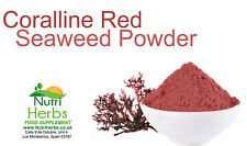 Coralline Red Seaweed Powder - Superfood Supplement 50g FREE UK Delivery