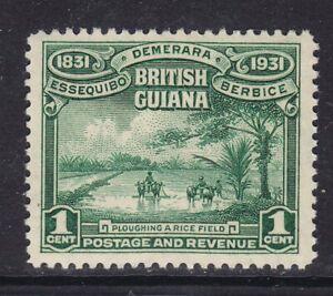 BRITISH GUIANA 1931 SG283 1c EMERALD-GREEN UNMOUNTED MINT