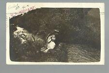 Rosebud SOUTH DAKOTA RP 1906 SIOUX INDIAN WOMAN Indians RESERVATION Wishart