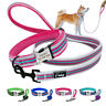 Personalised Reflective Dog Collar & Leads Fleece Padded Pet ID Name Plate S M L