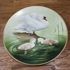 The 12 Waterbird Plates from Danbury Mint Mute Swan Porcelain Plate