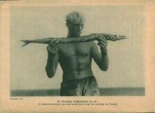 Document ancien expédition du Kon-Tiki un étrange compagnon 1951 issu du livre