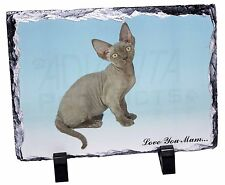 Devon Rex Kitten 'Love You Mum' Photo Slate Christmas Gift Ornament, AC-175lymSL
