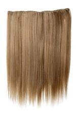 Postiche Extensions cheveux 5 Clips lisse Blond Aschblond lumineux 45cm