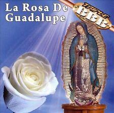 Rosa De Guadalupe 2009 by La Rosa De Guadalupe -ExLibrary