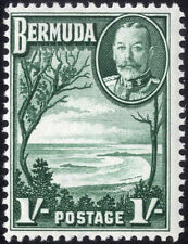 Mint Hinged George V (1910-1936) Bermudian Colony Stamps
