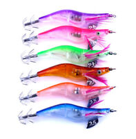 6Pcs Lighted Squid Calamari Jig Sinking Duel Lure EGI 2.5# Bait Hooks Jig 12g