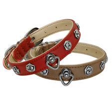 Fashion Leather Flower Studded Pet Puppy Dog Collar for Small Medium Dogs In Box